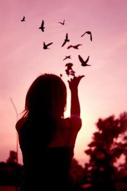 No elijas a la persona màs bonita del mundo
