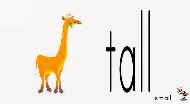 una jirafa y una hormiga
