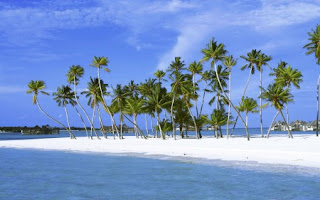Image Best Honeymoon Destinations In india Lakshadweep Islands