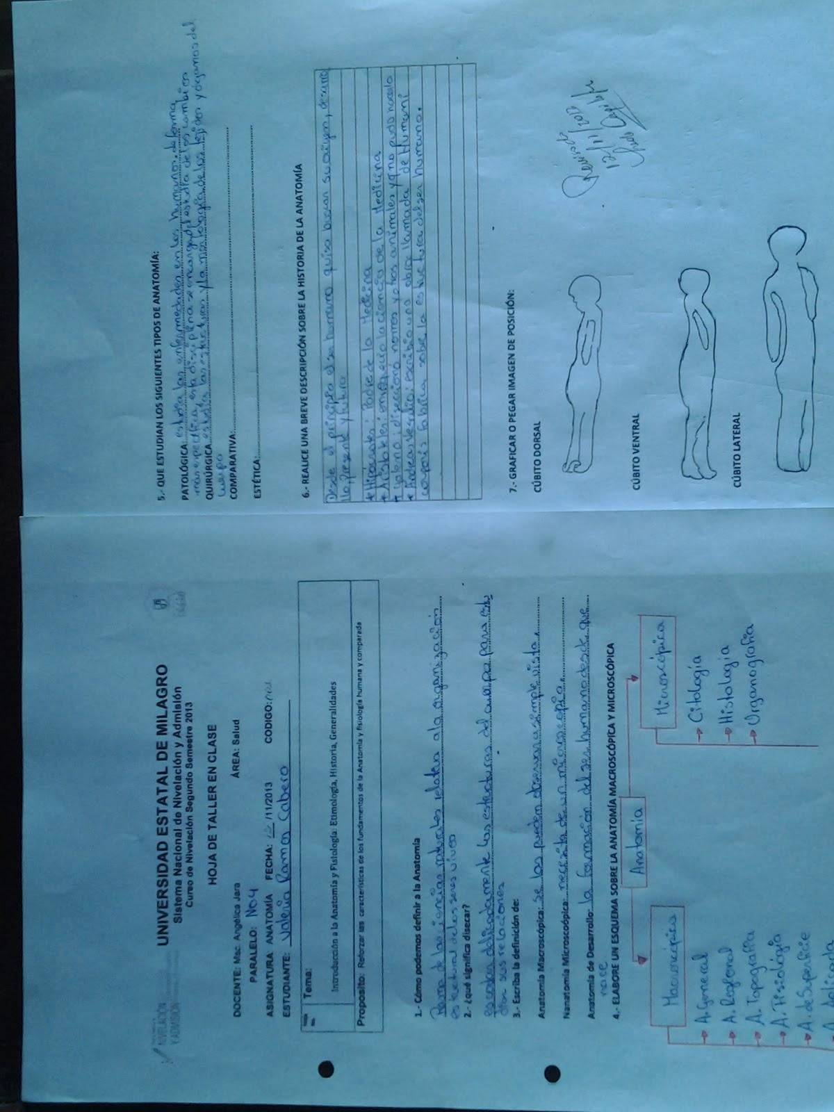 Estudiante del Curso de Nivelacion - UNEMI: TALLER EN CLASES Y ...