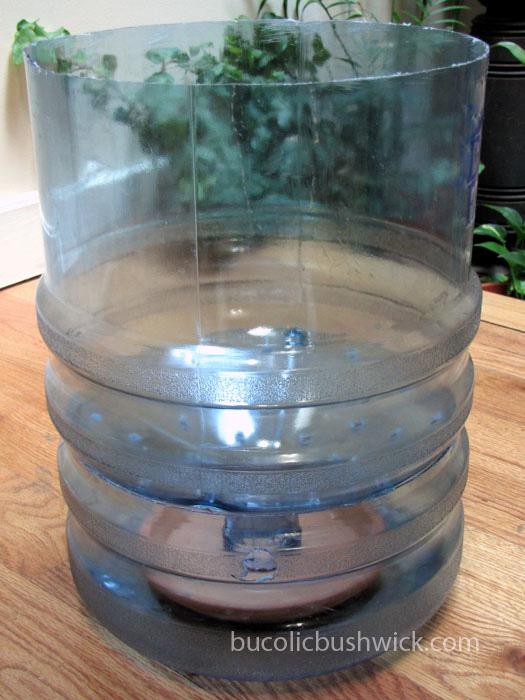 Bucolic bushwick diy self watering container water cooler bottle - Diy self watering container garden ...