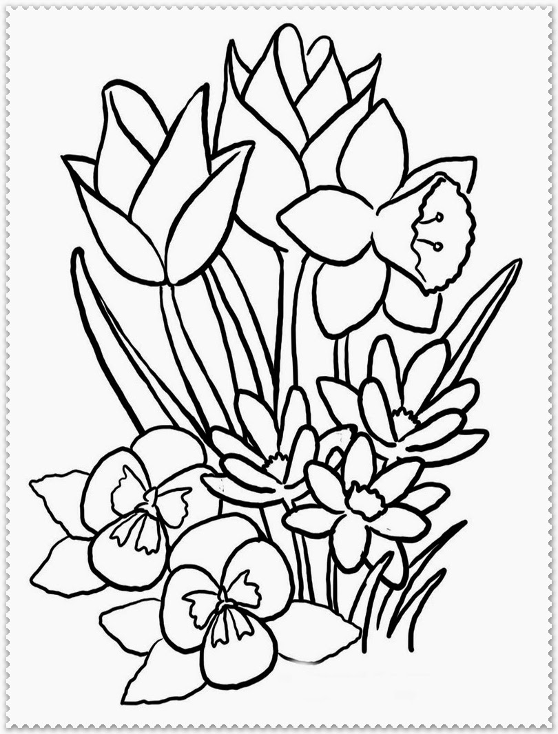 flower coloring pages - spring flower coloring page realistic coloring pages
