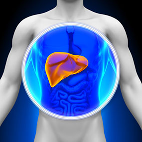 Terapi Pengobatan Penyakit Hepatitis