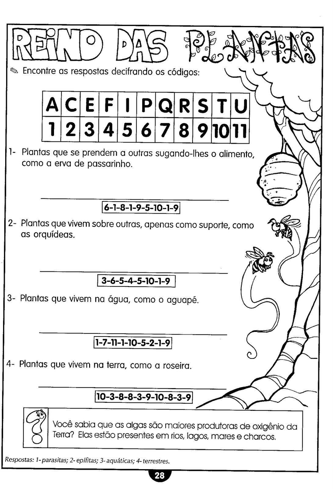 EDUCA    O E SUAS ESPECIFICIDADES