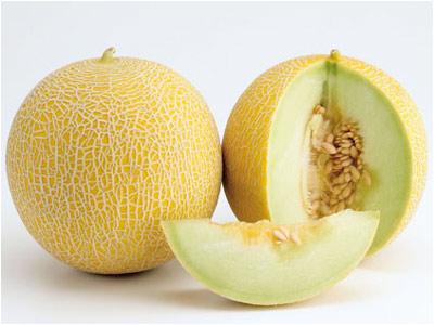 cerita lucu, cerita lucu rasa melon, gambar melon, http://tercerdas.blogspot.com