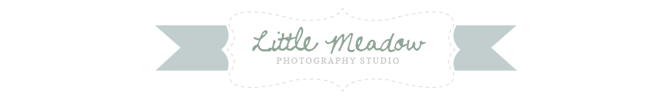 Little Meadow