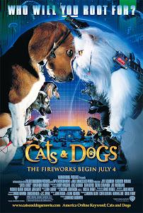 Cuộc Chiến Chó Mèo - Cats And Dogs poster
