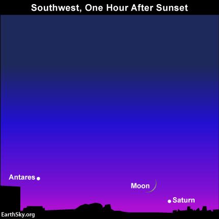 Minh họa bầu trời buổi chiều 25/10 tới. Các thiên thể sẽ nằm rất thấp gần chân trời, bạn hãy cố gắng quan sát được thử thách khó khăn này nhé. Hình minh họa : EarthSky.