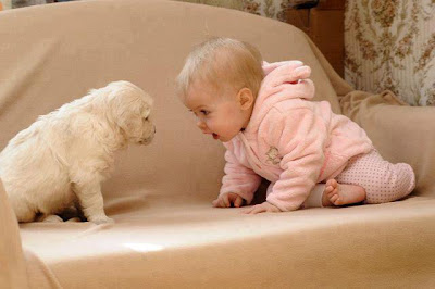 Picture of funny little baby and Pet puppy to Download Freely
