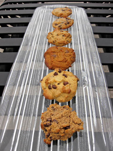 paleo cookie recipes