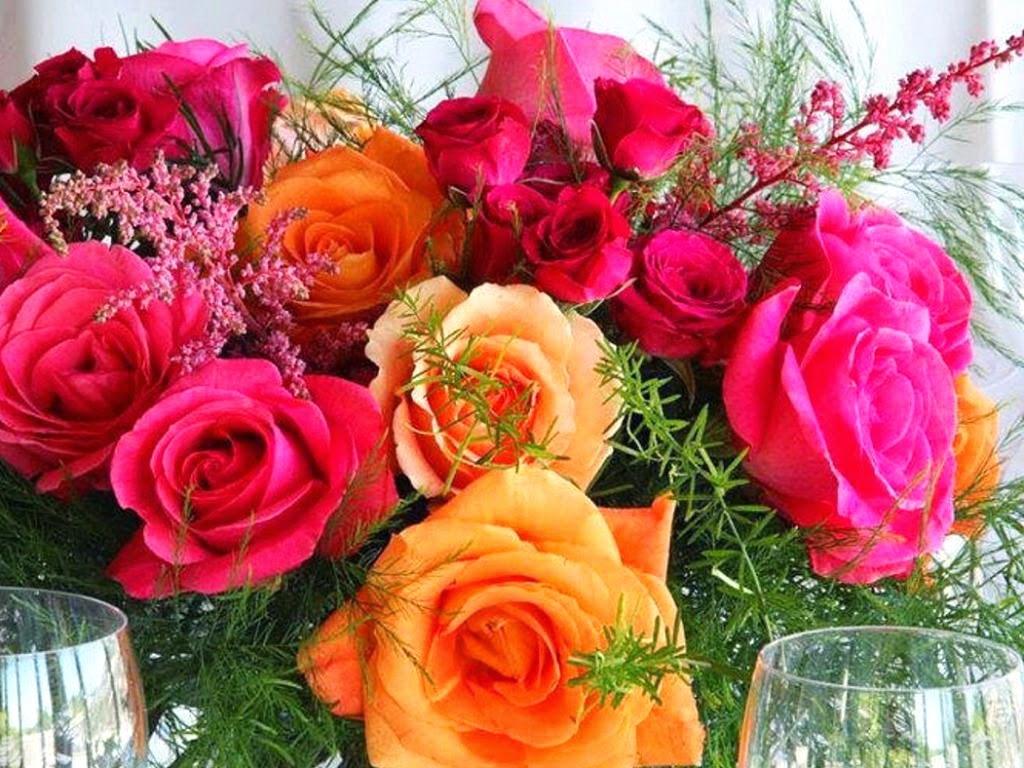 Beautiful orange rose wallpaper - Hd flower wallpaper rose ...