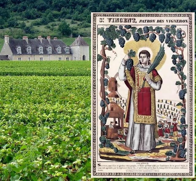 São Vicente padroeiro dos vinicultores