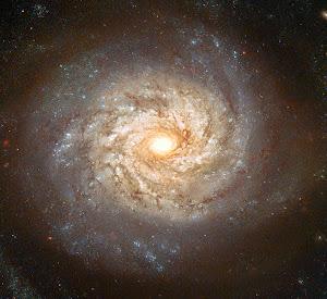 NGC 3982
