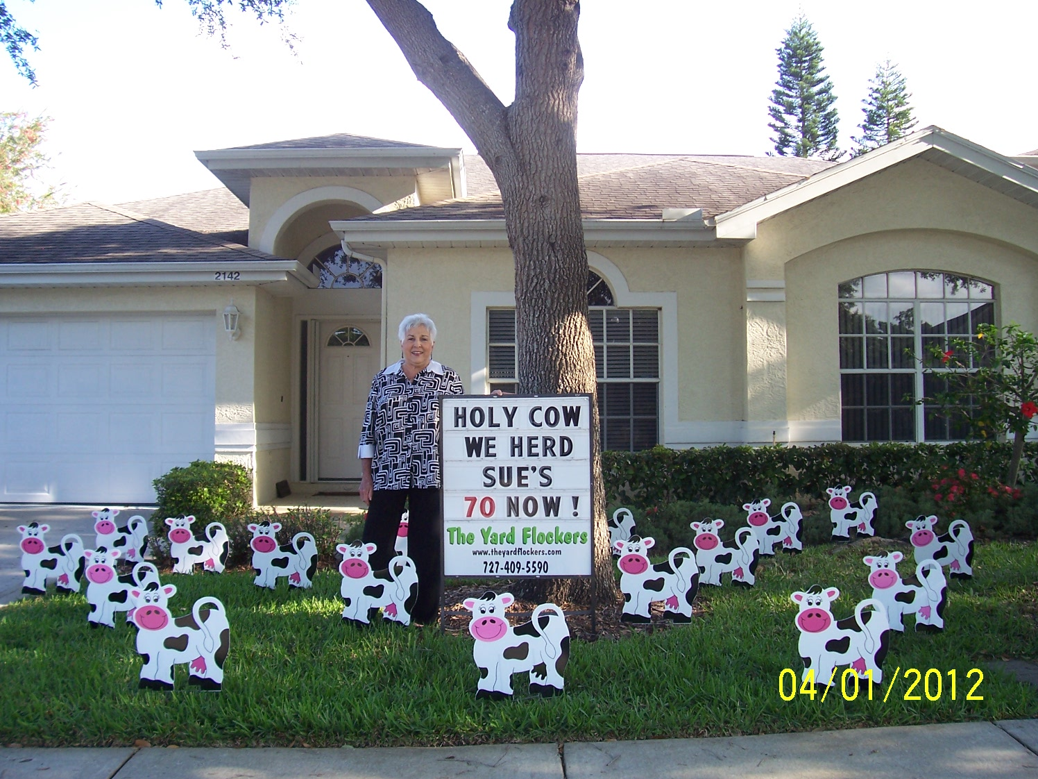 Birthday Yard Flocking Lawn Decorations Serving Tampa Bay Florida