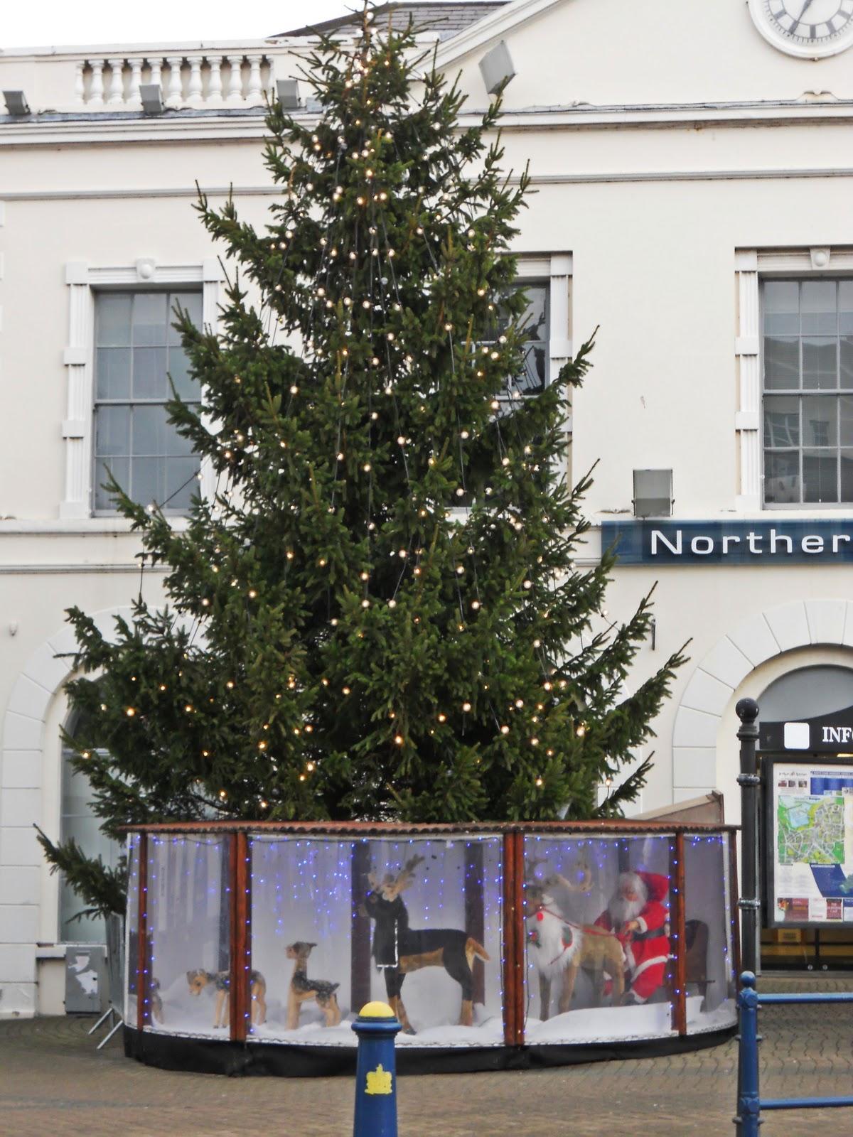 carmen bauer weihnachten in nordirland. Black Bedroom Furniture Sets. Home Design Ideas