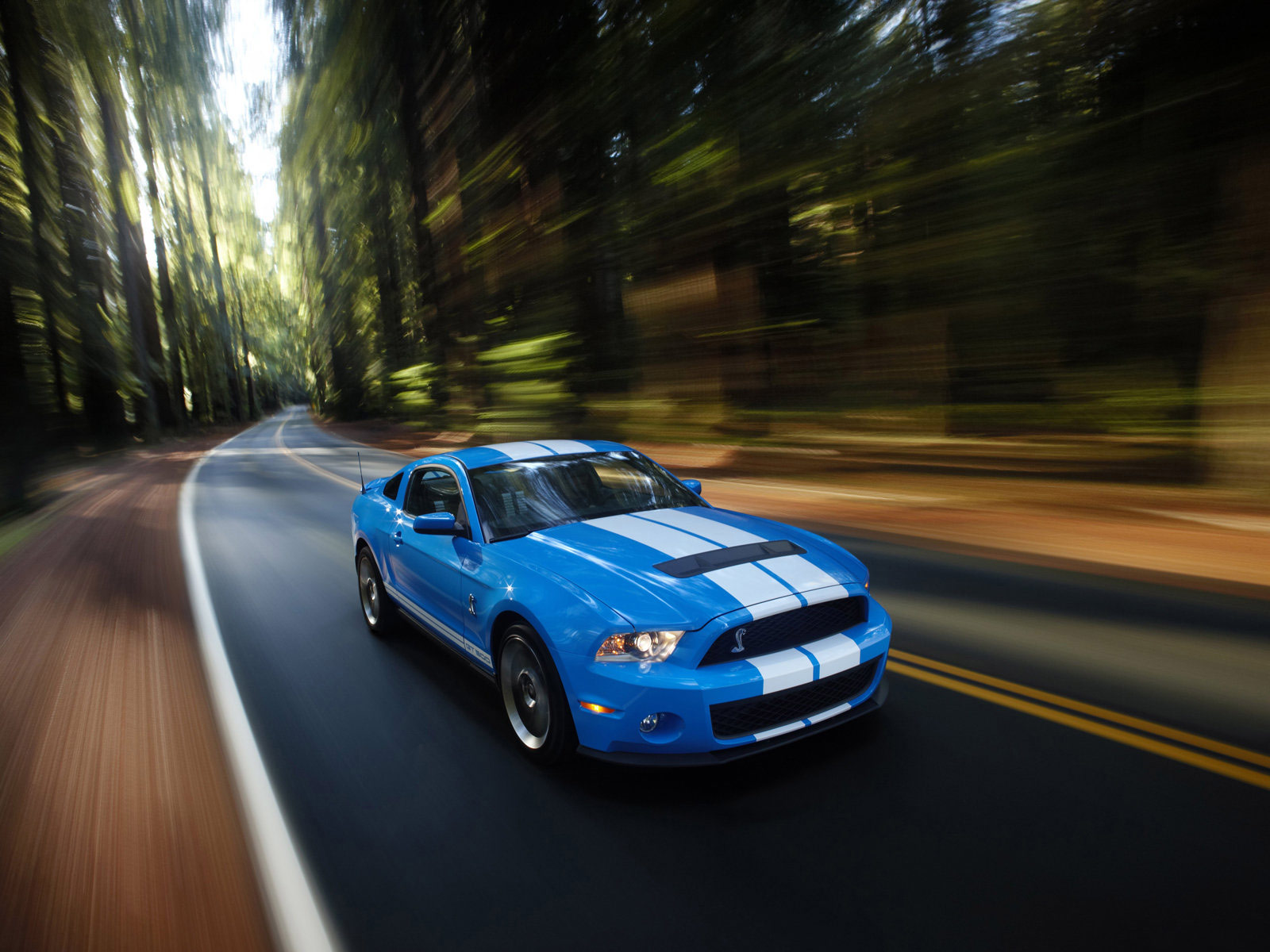 Gambar Mobil Ford Mustang Shelby Gt500 2010