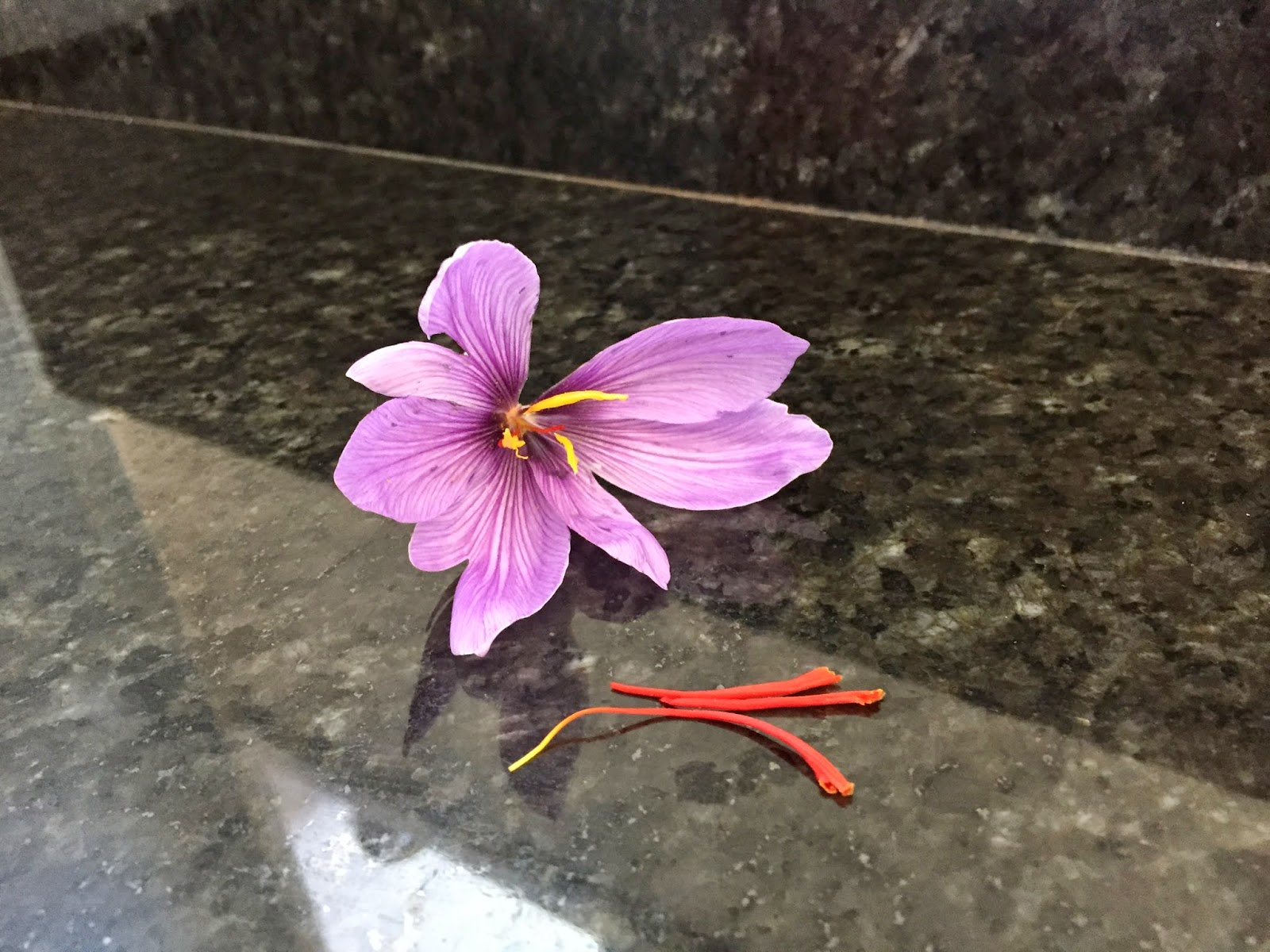 Saffron stamens pulled out