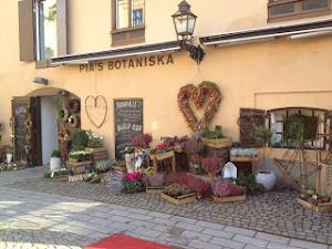 Pias Botaniska - Knäppingsborg i Norrköping!