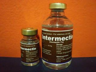 Intermectin, Obat, Sakit kulit, Demodek, Scabies, Anjing, Kucing, Kelinci, Kutu, Interchemie