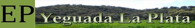 Yeguada La Plata