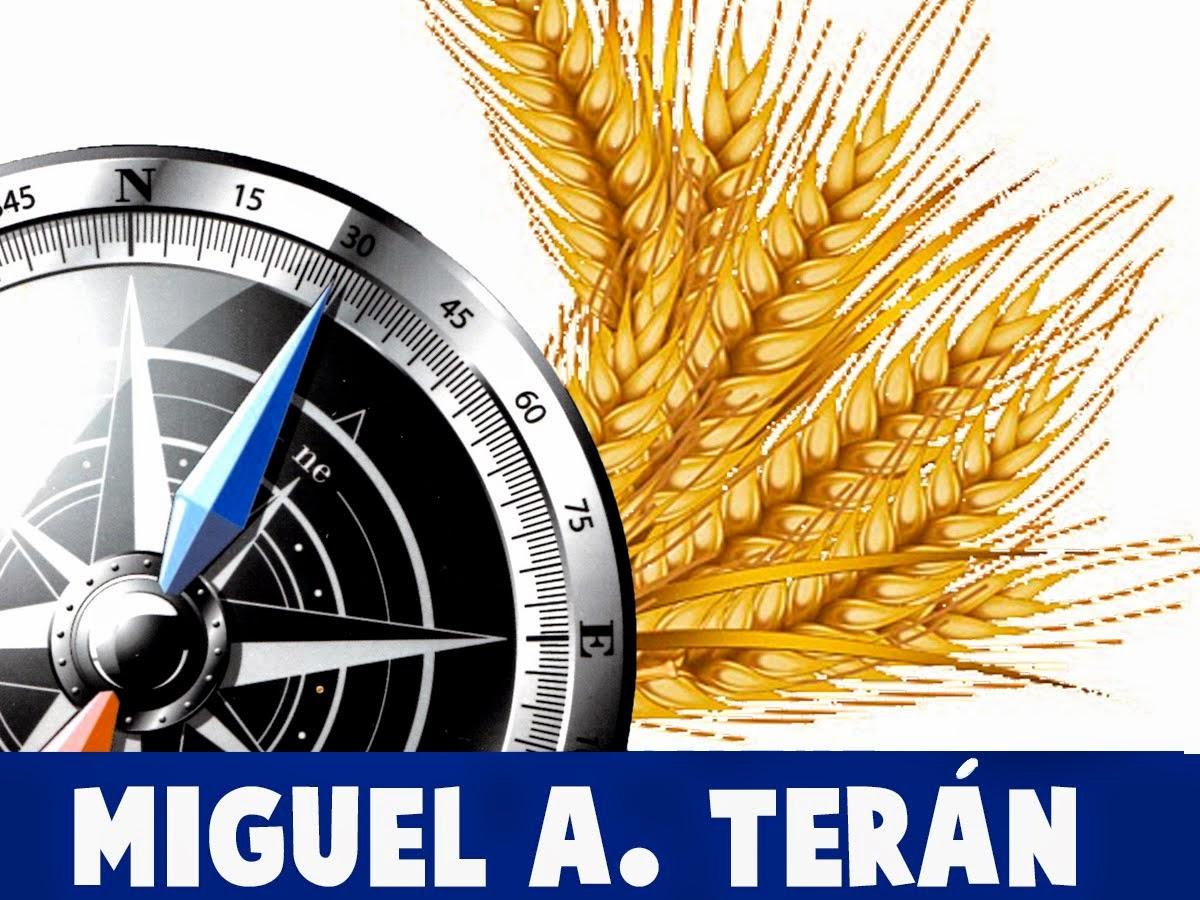 MIGUEL A. TERAN - CONSULTORIA HUMANA, NEGOCIOS & PROFESIONAL.
