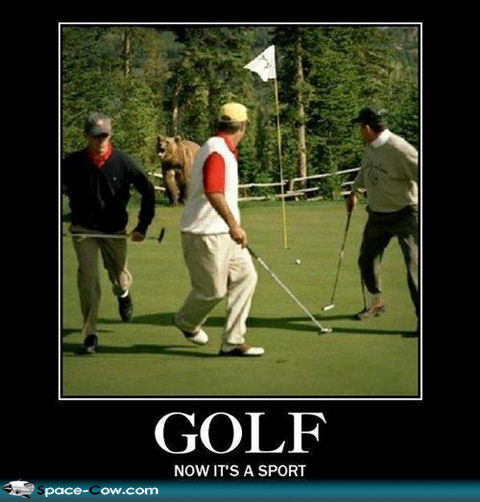 Funny+golf+picture+people+picture+demoti