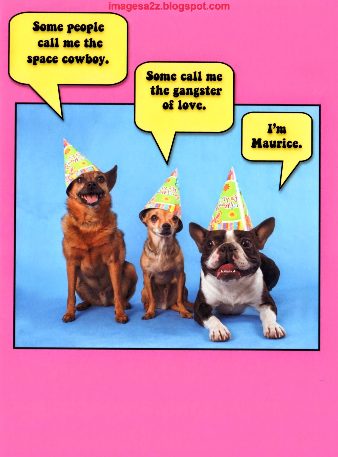 Funny belated birthday wishes happy birthday wishes quotes cakes funny belated birthday wishes m4hsunfo