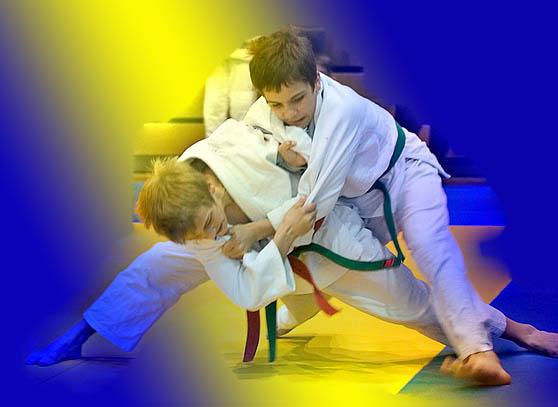 hoe werkt judo