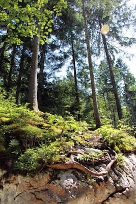 Rabenwand, Berchtesgaden in Bayern