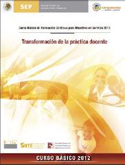 CURSO BÁSICO 2012