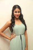 Lavanya Tripati latest glam pics-thumbnail-13