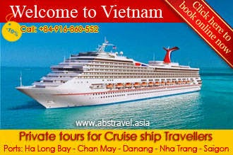 Shore excursion for cruise ship travelers, cruise ship private tour in Vietnam