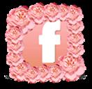 DA Sisters's Facebook