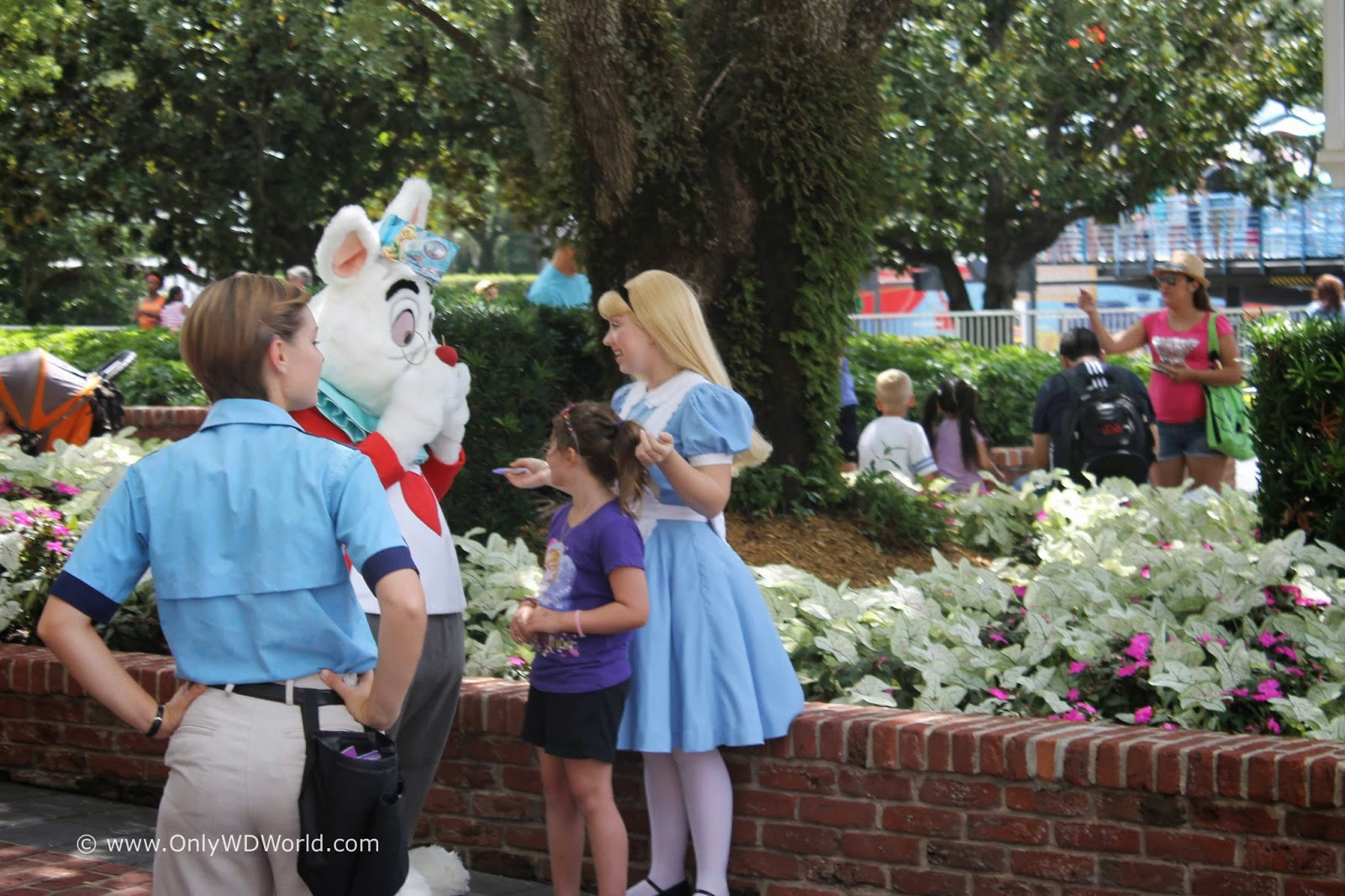 18 disney world character greetings that dont cost extra at the patio where you may get to meet peter pan he can often be found here meeting guests sometimes peter and wendy could be found meeting guests near peter kristyandbryce Image collections