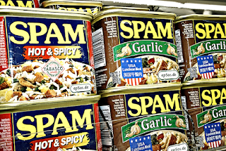 How To Reduce Spam Commenting On A Wordpress Blog