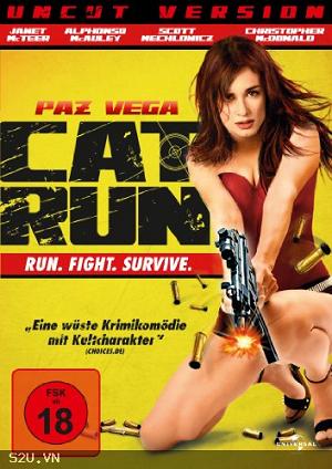 Mèo Chạy - Cat Run