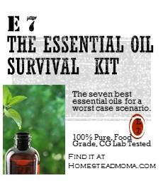Essential 7