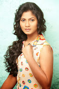 Shruti reddy sizzling photos gallery-thumbnail-12