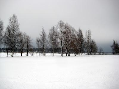 Cielo de fondo blanco