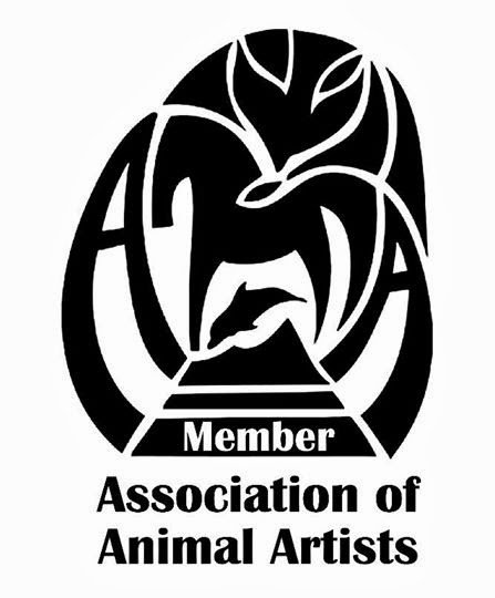 Proud to be a member of the AAA