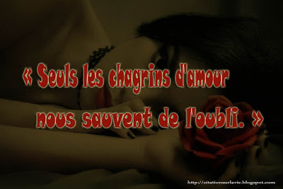 citation Triste amour