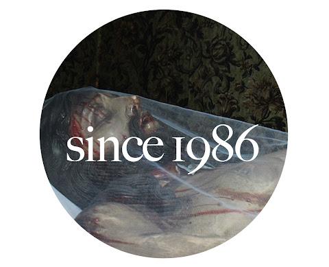 since1986
