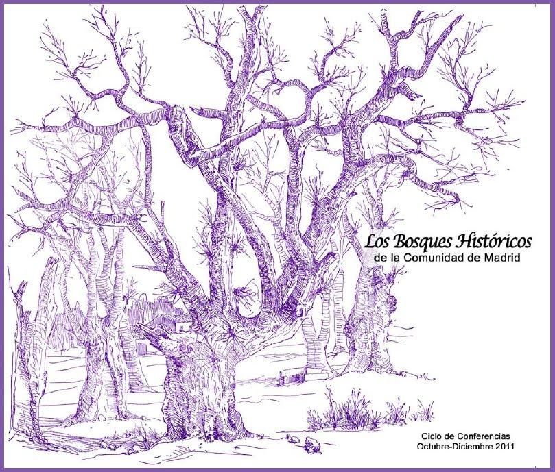 bosques historicos de la comunidad de madrid