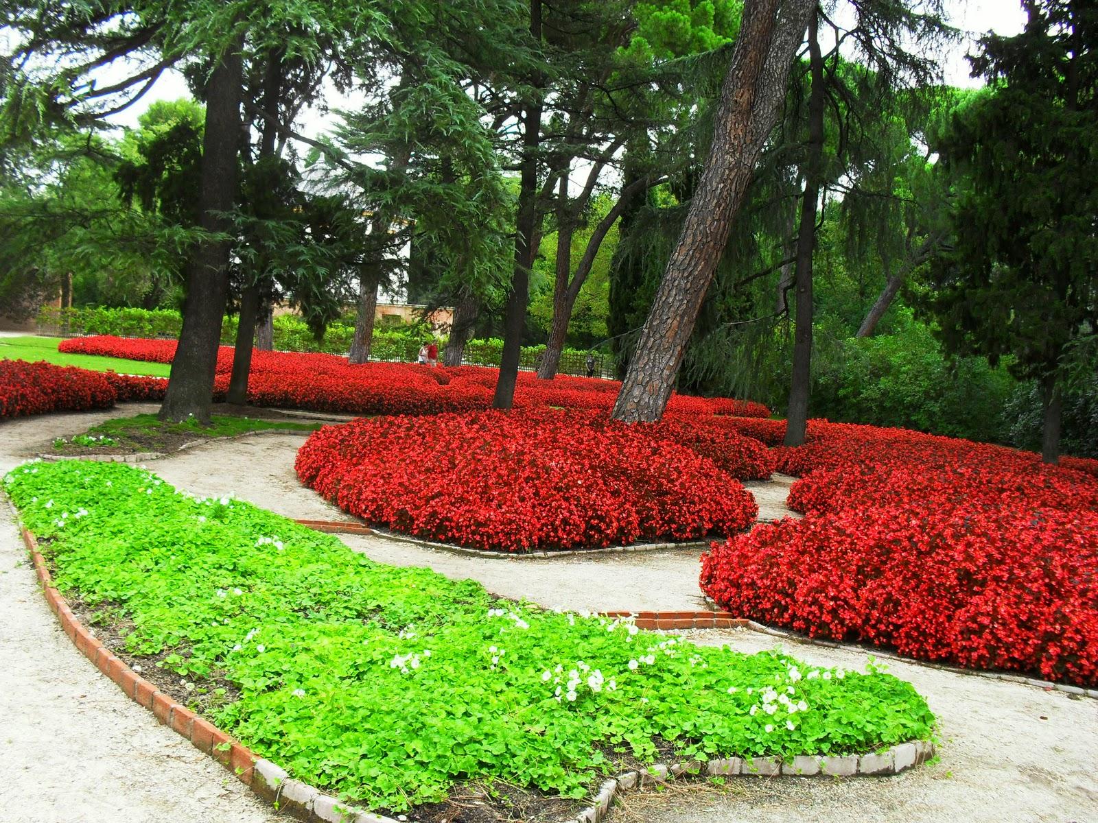 Arte y jardiner a decisiones a tomar en dise o de jardines for Diseno jardines