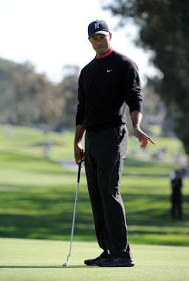 Tiger Woods Professional Golf Star Personal Information And Nice New Pictures And Wallpapers Gallery.
