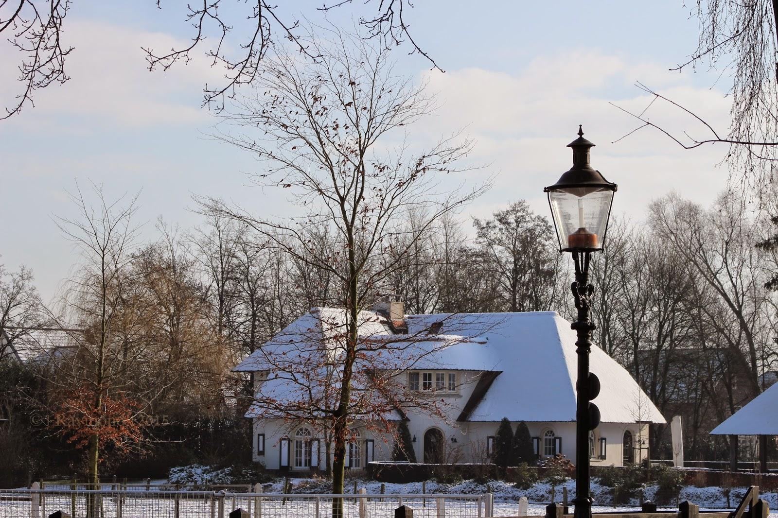 Bornse plaatjes geweldig mooi huis met rieten dak gezien vanuit oud borne - Mooi huis ...