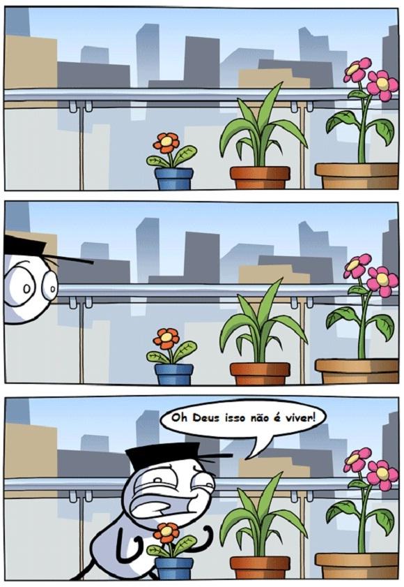Tirinha do Blog Vida de Meme: Plantas merecem o melhor