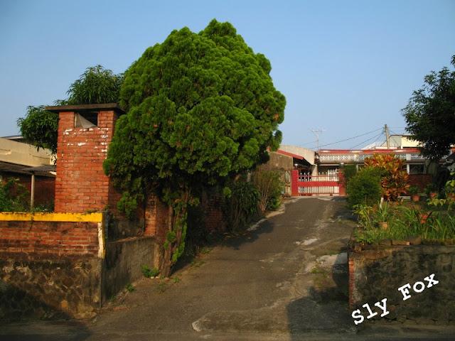 台南市山上區