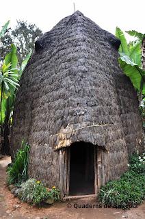 casa elefant, casa dorze
