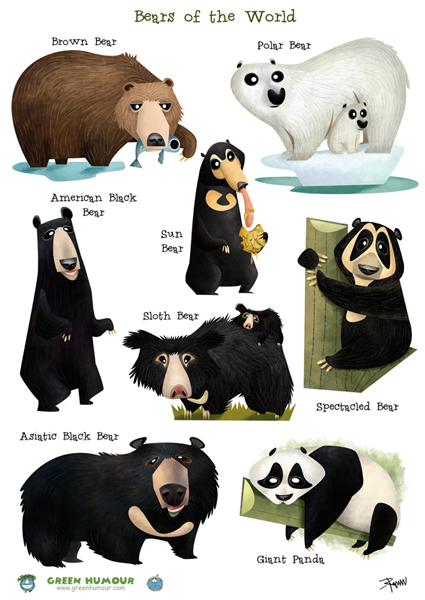 Bear Species Size Chart Bear Species Chart